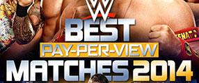 Best-PPV-2014-DVD-logo