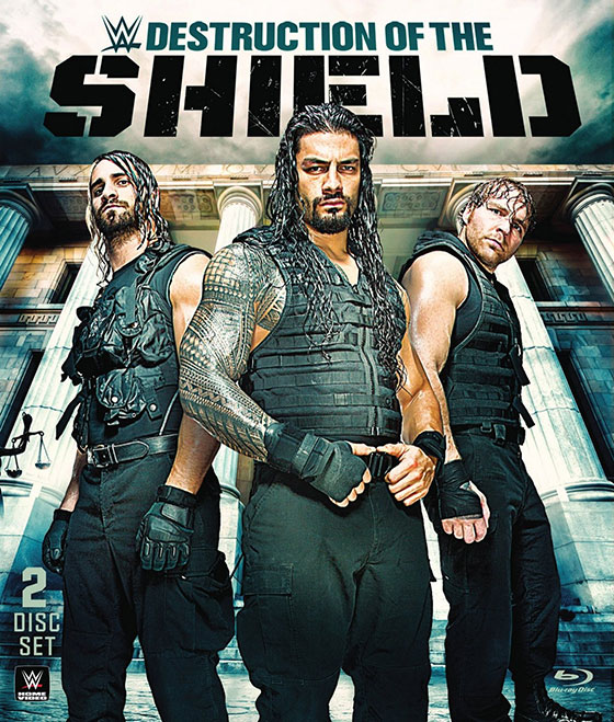 Destruction-of-The-Shield