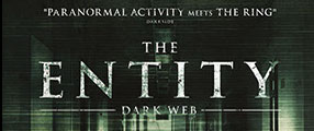 the-entity-logo