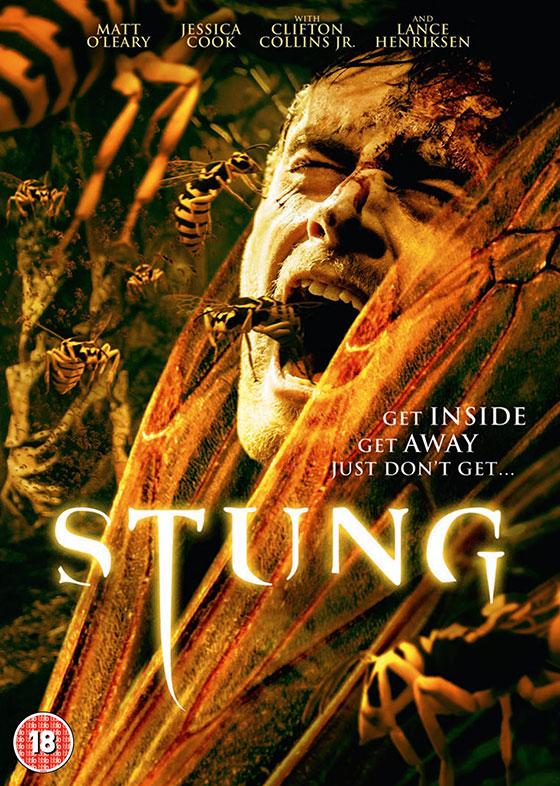 STUNG_DVD_2D_1