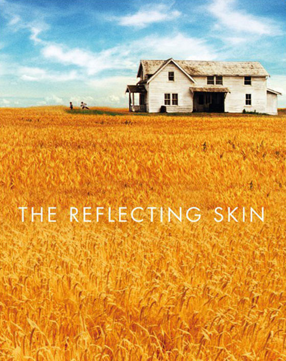 the-reflecting-skin
