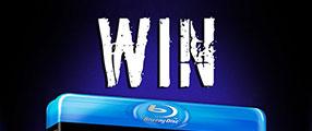 survivor-series-2015-WIN
