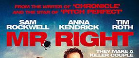 mr-right-dvd-logo