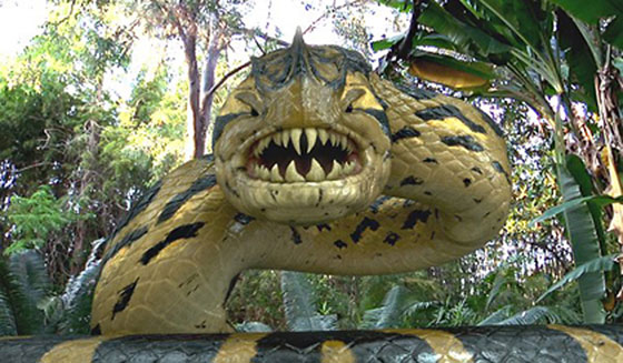 piranhaconda-image