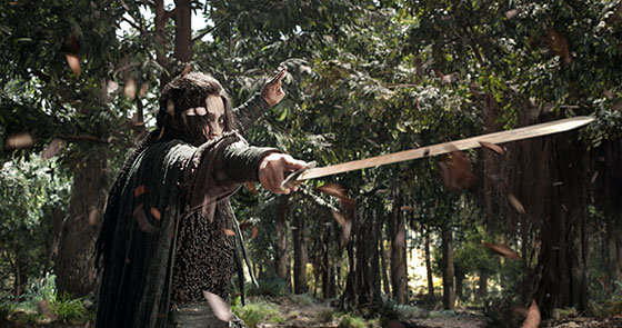 SwordMaster-image