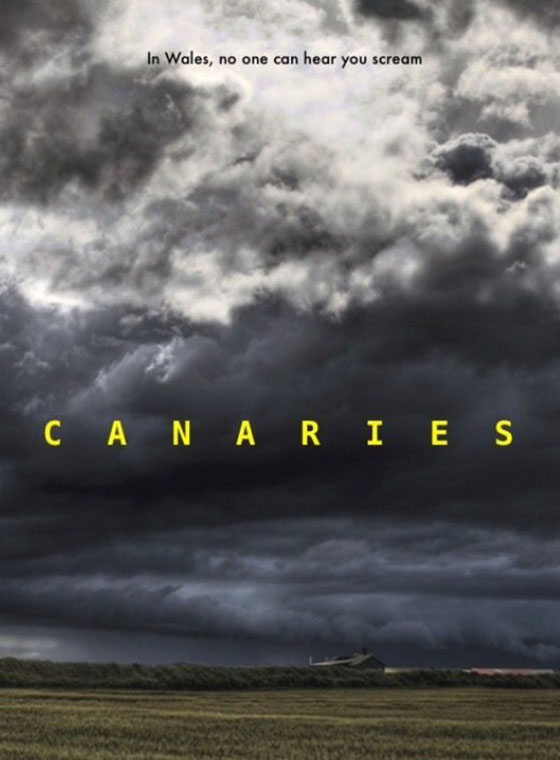 canaries-poster