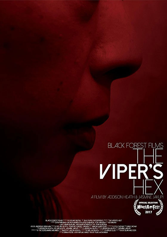 vipers-hex-poster