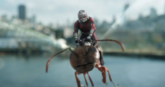 Ant-Man-and-the-Wasp-images-9