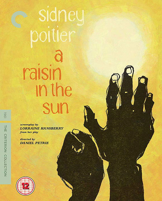 raisin-sun-blu-cover