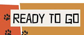 ready-to-go-poster-logo