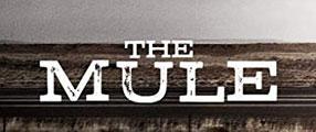 mule-poster-logo