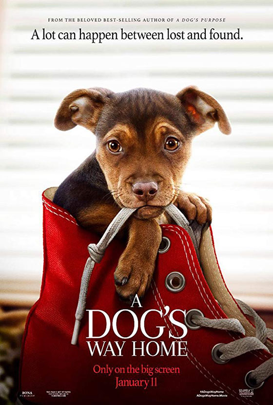 dogs-way-home-poster