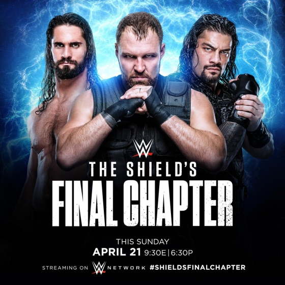 shield-final-chapter-art