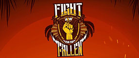 aew-fight-fallen-logo
