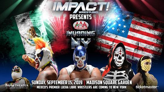 AAA-Impact-Header