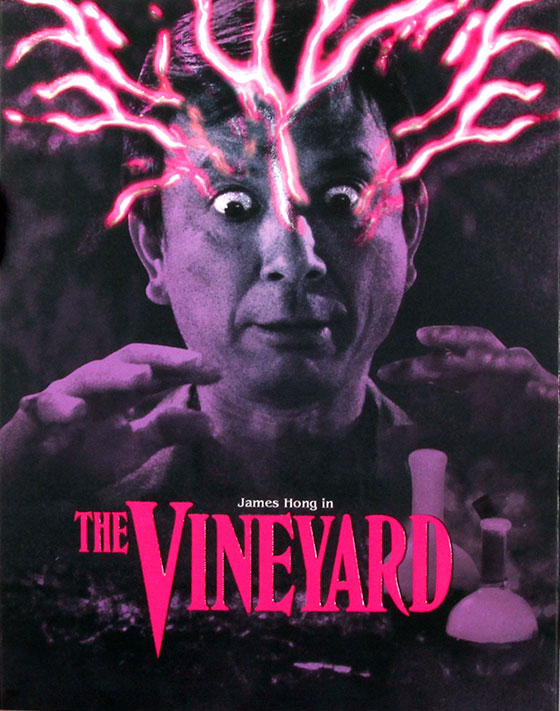 Vineyard-VS-art