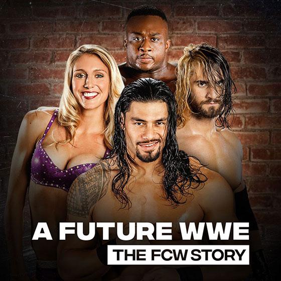 future-wwe-fcw-art