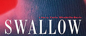 swallow-poster-logo
